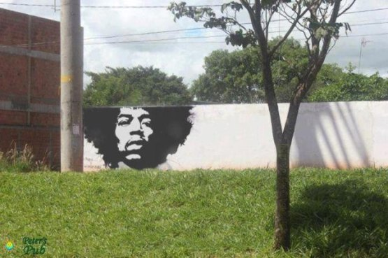 Jimi-Hendrix-hair-tree