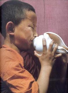 http://spiritualglobe.blogspot.com/2008/02/conch-shell-skt-shankha-tib-dung-dkar.html